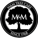 The Professional Tree Care People